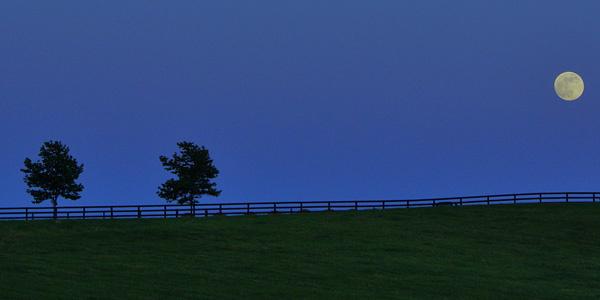 image of full rose moon